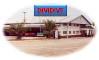 Dividive